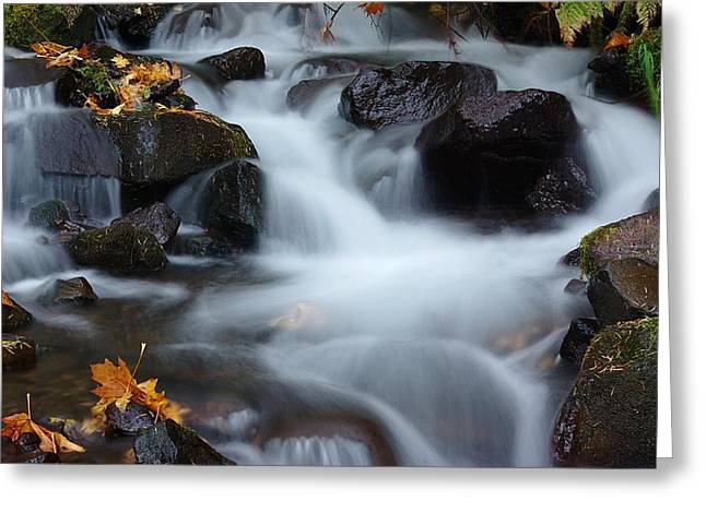 Wahkeena Creek 3 Greeting Card