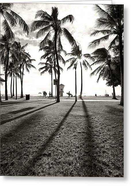 Waikiki Palm Shadows Greeting Card by Sean Davey