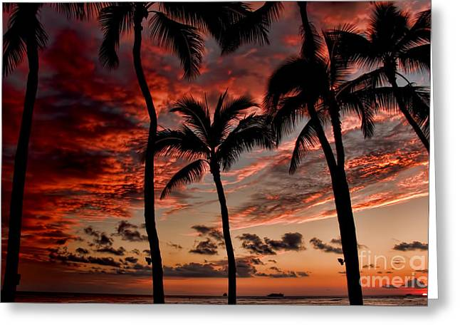 Waikiki Sunset Greeting Card by David Smith