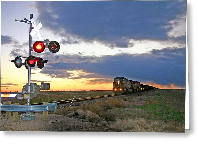 Greeting Card featuring the photograph Wait Your Turn by Shirley Heier
