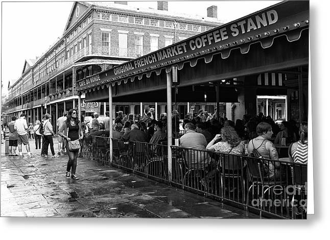 Waiting For A Beignet Mono Greeting Card by John Rizzuto