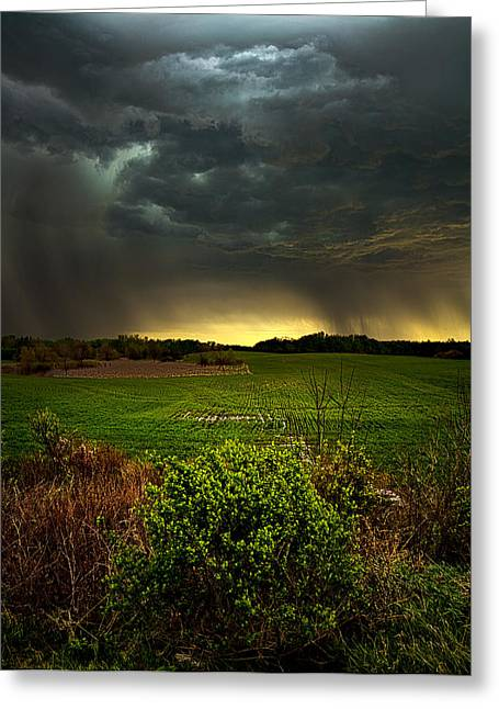 Waiting For Rain Greeting Card by Phil Koch