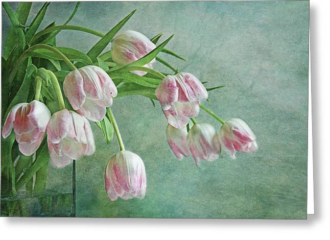 Waiting For Spring Greeting Card by Claudia Moeckel
