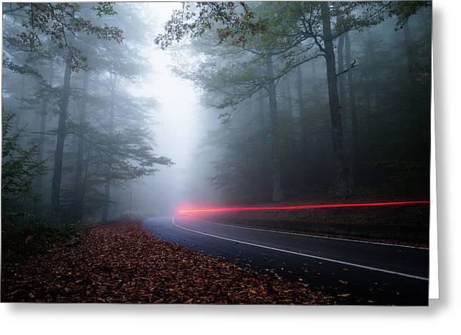 Wake In The Fog Greeting Card