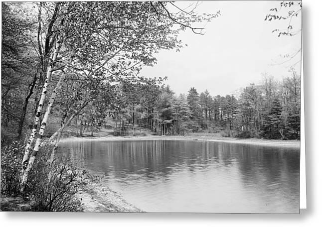 Walden Pond, C1905 Greeting Card