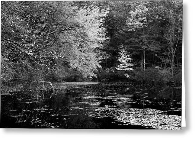 Walden Pond Greeting Card by Christian Heeb