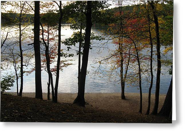 Walden Pond In Autumn Greeting Card by Sheila Savage