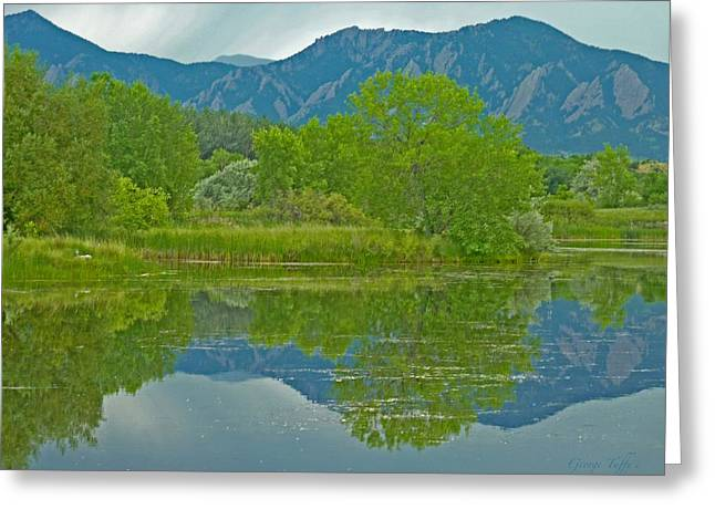 Walden Pond Spring Reflections Greeting Card by George Tuffy
