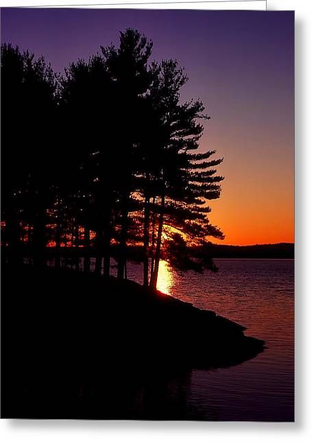 Walden Pond  Greeting Card by Tom Wilder
