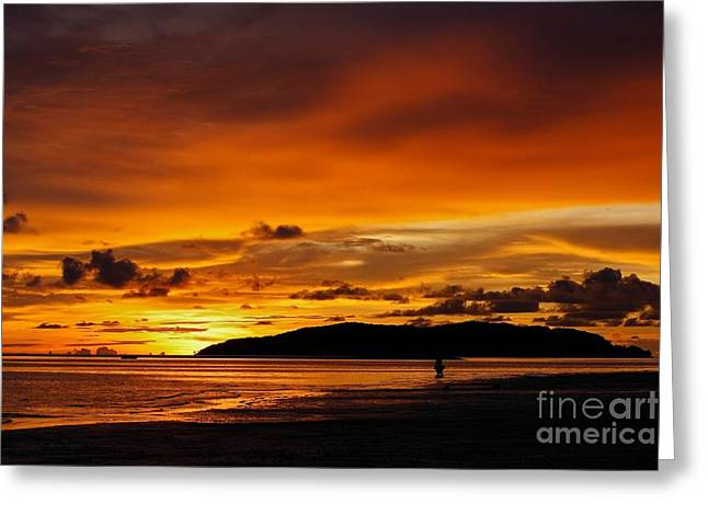 Walk In Paradise  Greeting Card by Gary Bridger