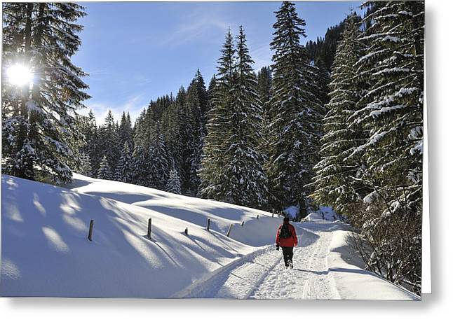 Walk In Sunny Winter Landscape Greeting Card by Matthias Hauser