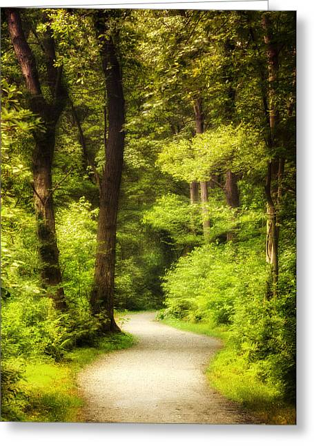 Walk In The Woods Greeting Card by Vicki Jauron