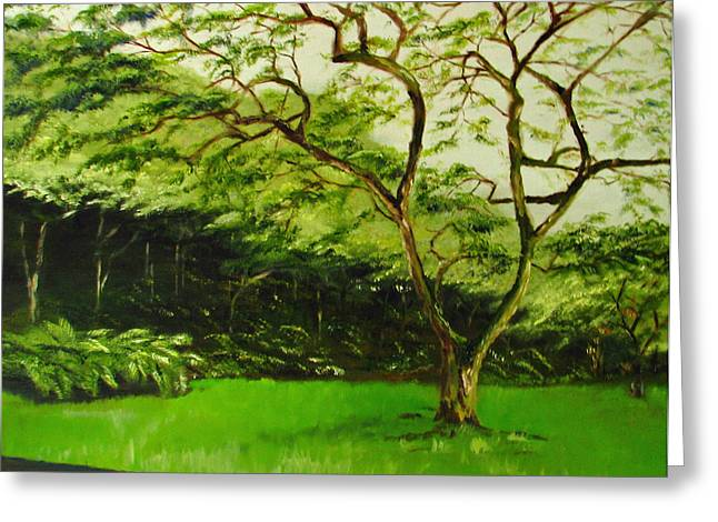 Walk In Waimea Valley Greeting Card by Sherry Robinson