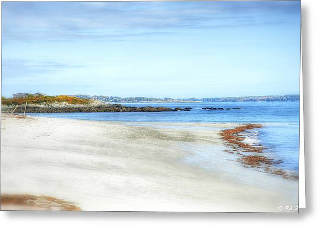 Walk On The Beach Greeting Card by Richard Bean