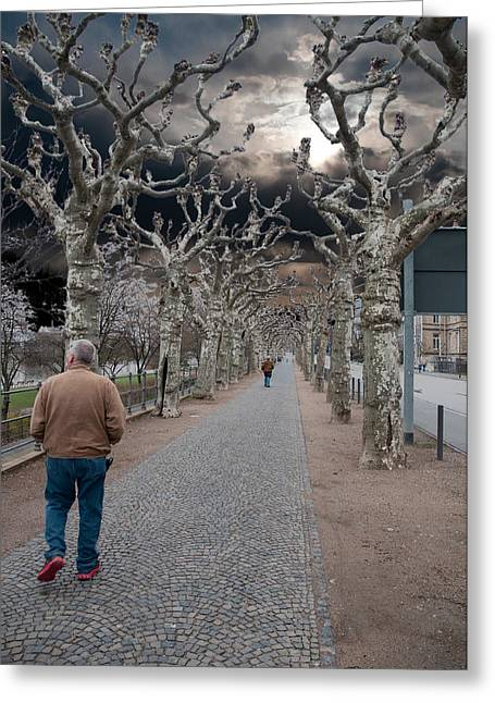 Greeting Card featuring the photograph Walk Under The Trees Iv by Robert Culver