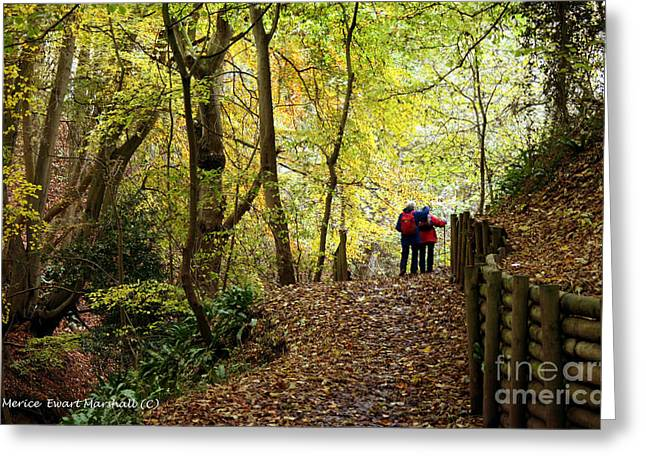 Walkers In The Woods Greeting Card by Merice Ewart