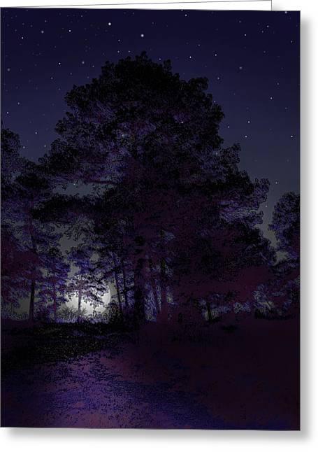 Walking At Night Greeting Card by Nina Fosdick