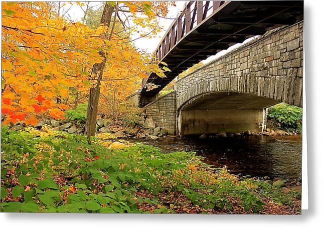 Greeting Card featuring the photograph Walking Bridge In Fall by Amazing Jules