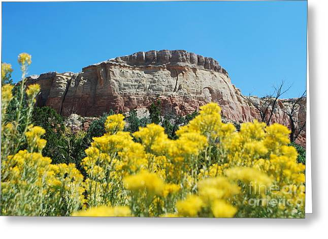 Greeting Card featuring the photograph Walking Ghost Ranch by William Wyckoff