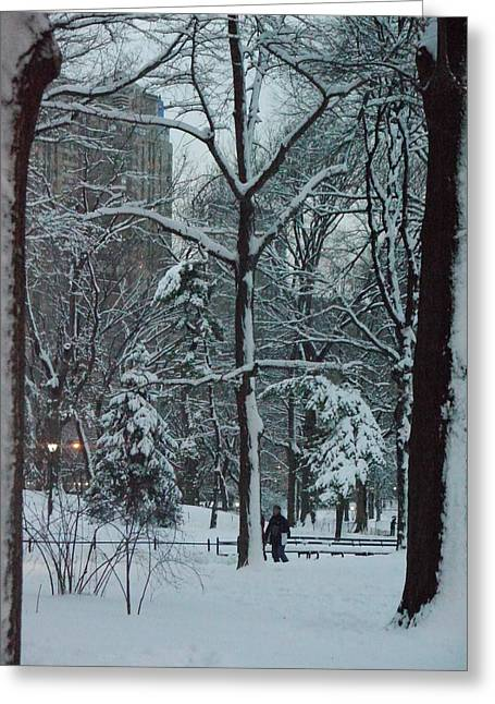 Greeting Card featuring the photograph Walking In Snowy Central Park At Dusk by Winifred Butler