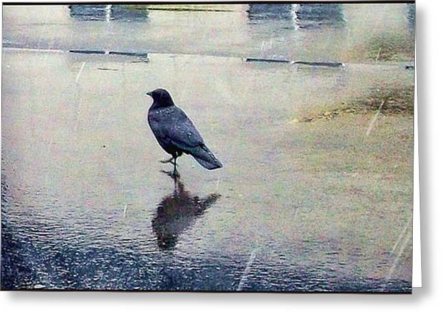 Walking In The Rain Greeting Card