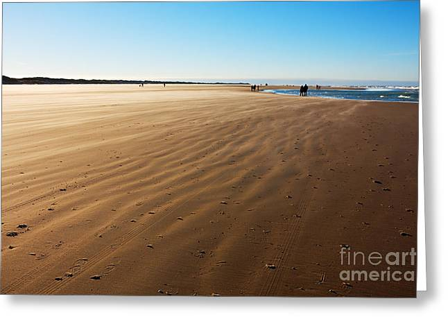 Walking On Windy Beach. Greeting Card