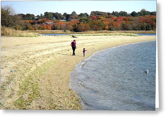 Walking The Beach In October Greeting Card by Kate Gallagher