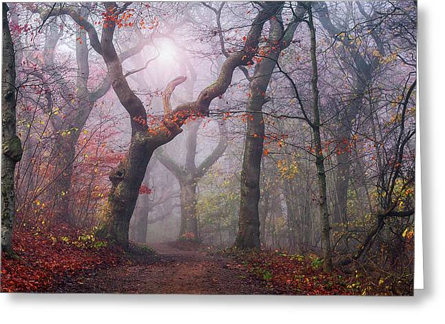 Walking The Old Path. Greeting Card
