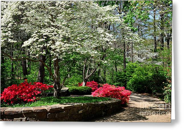 Walking To The Chapel Greeting Card by Nava Thompson