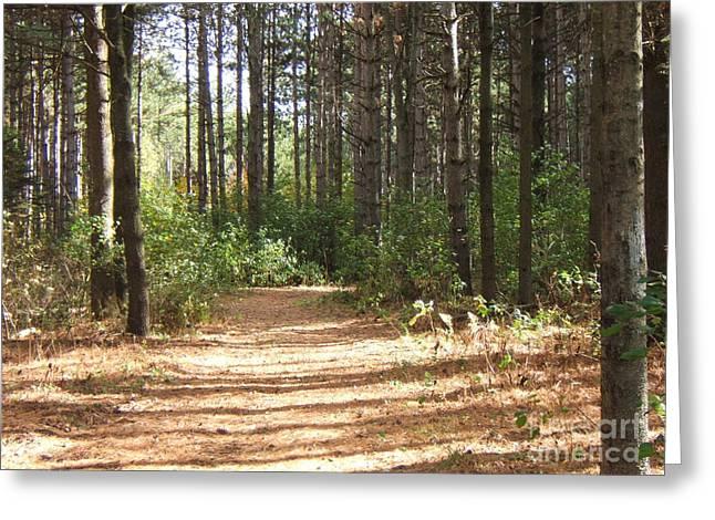 Walking Trail Greeting Card by Margaret McDermott