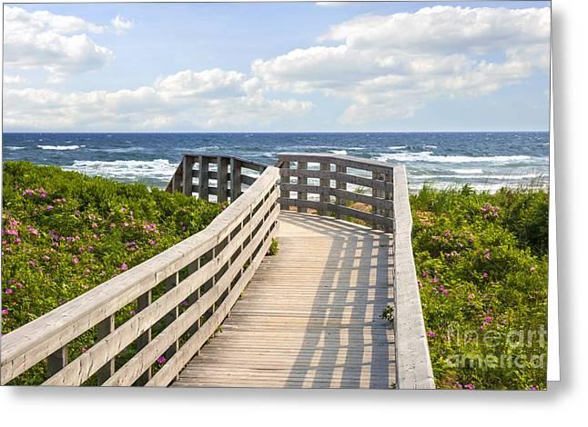 Walkway To Ocean Beach Greeting Card by Elena Elisseeva