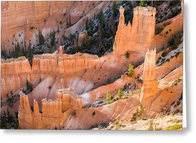 Wall Of Hoodoos At Bryce Canyon Greeting Card by Tom Norring