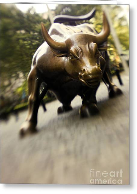 Wall Street Bull Greeting Card by Tony Cordoza
