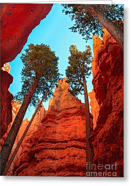 Wall Street Greeting Card by Robert Bales