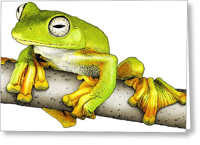 Wallaces Flying Frog Greeting Card by Roger Hall