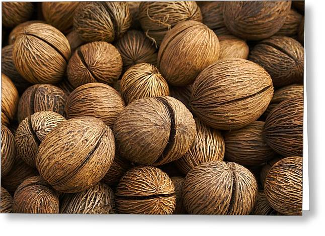 Walnuts Pile Greeting Card by Ognian Medarov