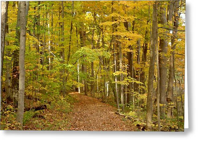 Wandering Trail 6 Greeting Card by BackHome Images