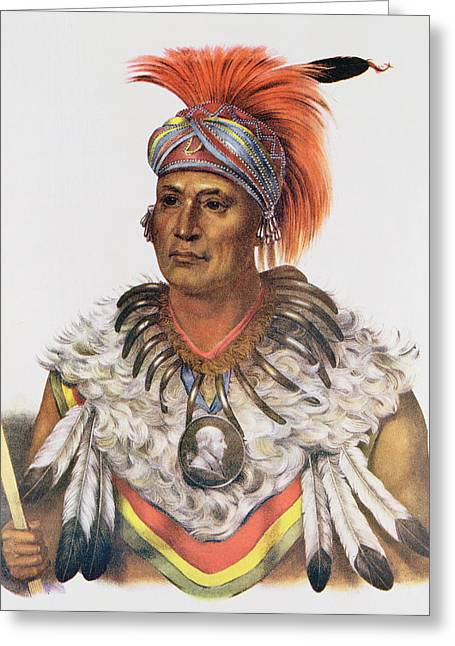 Wapella Or The Prince Chief Of The Foxes, 1837, Illustration From The Indian Tribes Of North Greeting Card by Charles Bird King