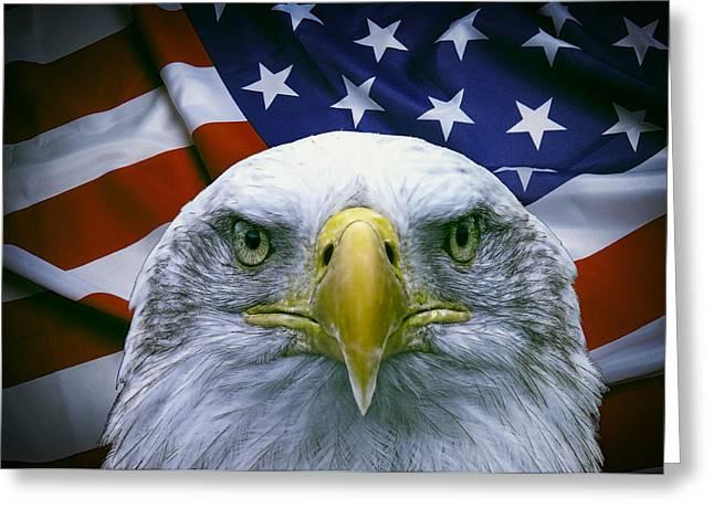 War Eagle Greeting Card