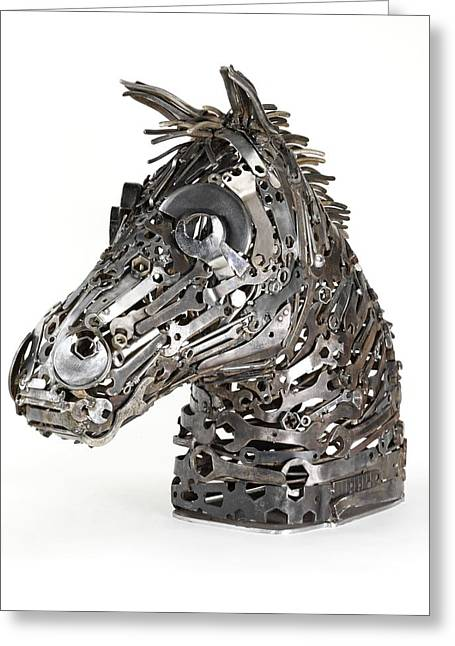 Warhorse Greeting Card by Lawrie Simonson