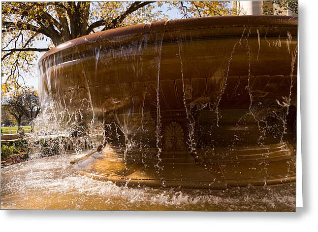 Warm And Wet Fall Water Play Greeting Card