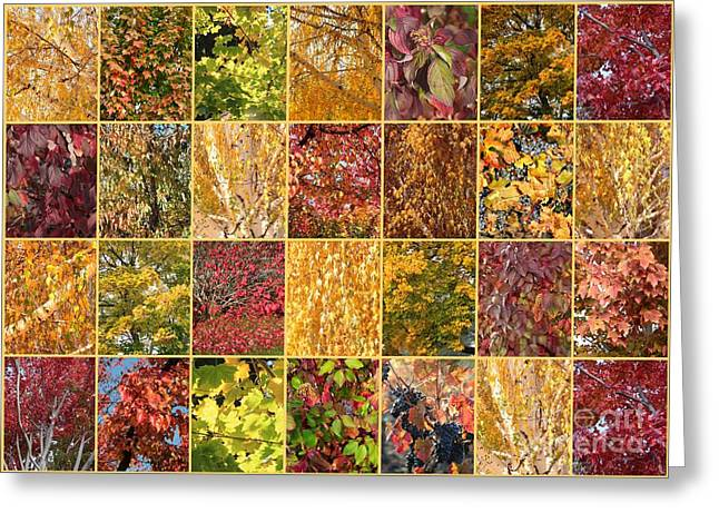 Warm Autumn Quilt Collage Greeting Card
