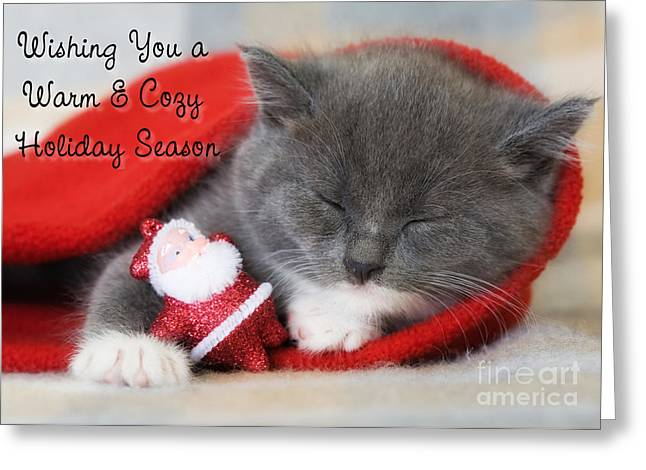 Warm Cozy Kitty Christmas Greeting Card