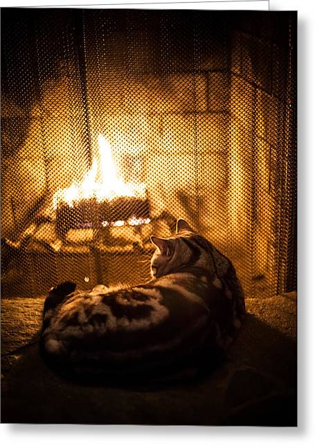 Warm Kitty Greeting Card