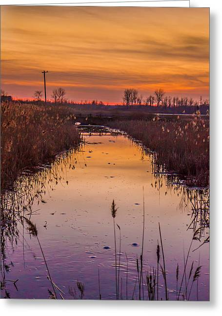 Warm Reflection Greeting Card by Bruno Santos