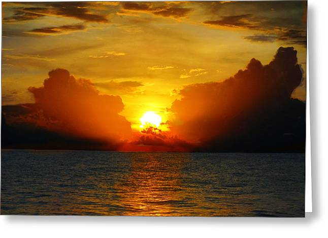 Warm Sunrise - Beach Art By Sharon Cummings Greeting Card