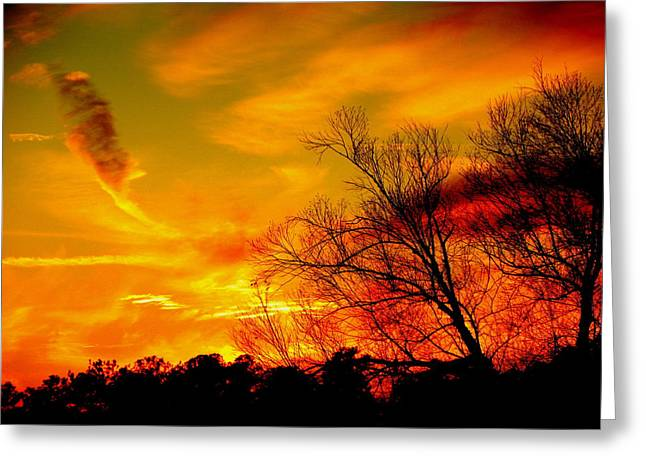 Warm Winter Sunset  Greeting Card by Walter  Holland