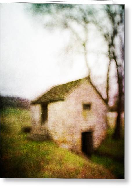 Warner Park Springhouse Greeting Card by David Morel