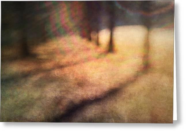 Warner Park Sunrise Greeting Card by David Morel