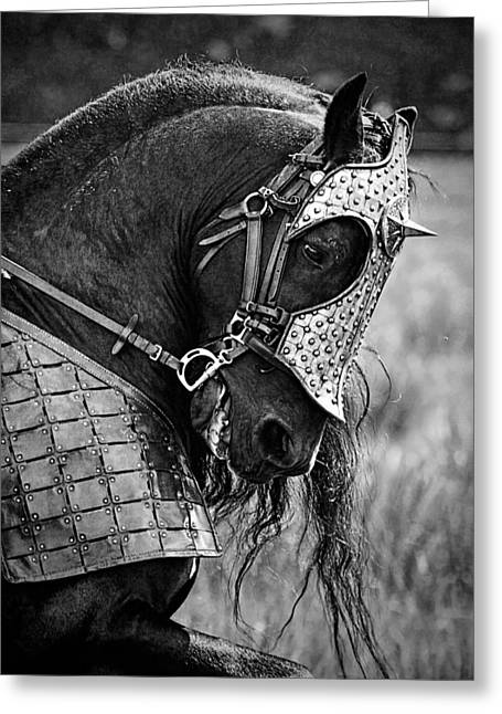 Warrior Horse Greeting Card